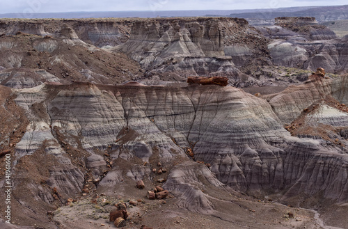 Blue Mesa at Petrified Forest National Park Canvas-taulu