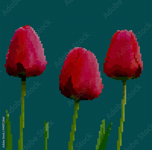 Cadres-photo bureau Poppy Knitted background - flowers tulips. Red tulips on a dark cyan background. Vector illustration.