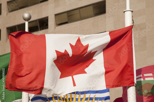 Stampa su Tela  Canada flag blowing in Toronto