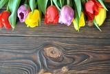 Fototapeta Kwiaty - Rustykalne tło z tulipanami