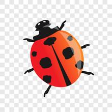 Ladybug. Vector Illustration