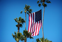 American Flag Hanging Between Palm Trees