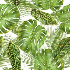 fototapeta tropikalne liście wzór