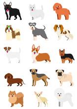 Small Dog Breeds Set