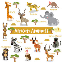 African Animals Cartoon On White Background With Animal Name, Vector Illustration. Set 2.