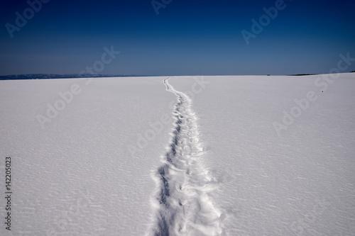 Fényképezés 雪原につづくスノーシューの足跡