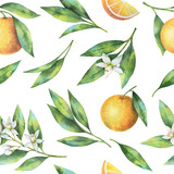 Watercolor fruit orange seamless pattern of flowers and leaves isolated on white background. - 142205866