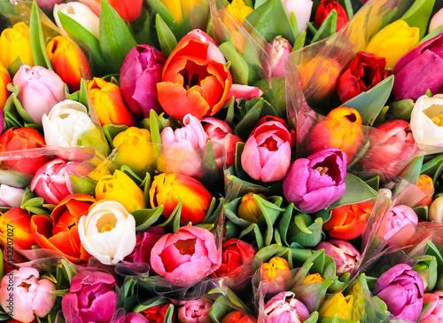bukiet-wielokolorowych-tulipanow