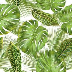 fototapeta tropikalny wzór liści