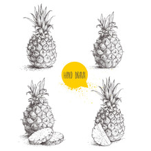 Hand Drawn Sketch Style Set Illustrations Of Ripe Pineapples. Exotic Tropical Fruit Vector Illustrations Isolated On White Background.