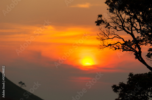 Poster Afrique du Sud Sunset in mountains,Tree silhouette with scenic sunset sun over colorful sky background.