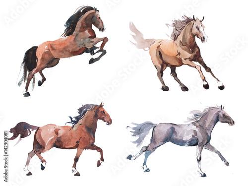 Fotografia Watercolor painting of galloping horse, free running mustang aquarelle