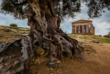 Agrigento, Italy - October 15, 2009: Ancient Greek Landmark In The Valley Of The Temples Outside Agrigento, Sicily