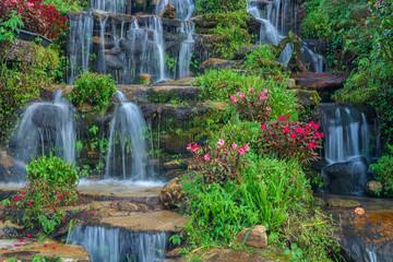 Fototapeta Wodospad beautiful landscaping with waterfall and flowers