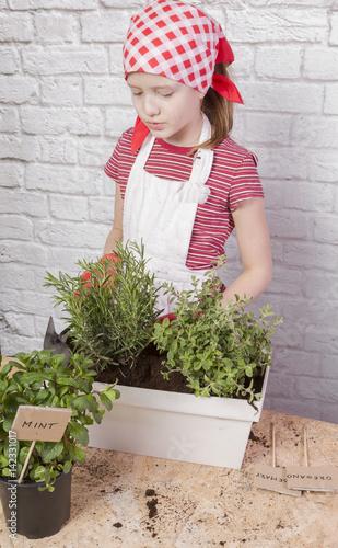 Obraz Zioła sadzone na wiosnę przez dziewczynkę - fototapety do salonu