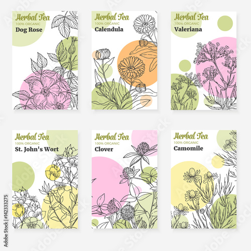 Photo  Package templates for herbal tea