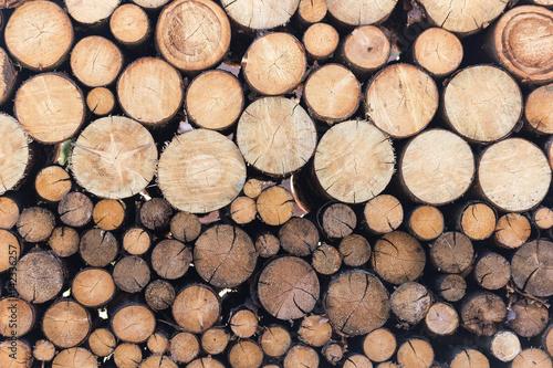 Foto auf Leinwand Brennholz-textur Brennholz rund - schön geordnet und gestapelt