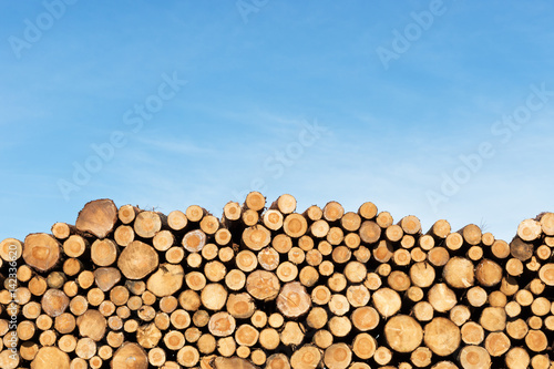 Photographie  Photo of a pile of natural wooden logs