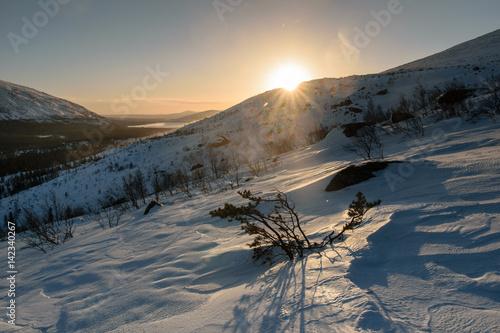 Foto op Aluminium Grijze traf. Winter landscape in Russian Lapland, Kola Peninsula