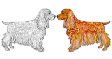 Coloring Book Page With Spaniel. Ethnic Decorative Doodle Dog. Vector Illustration Isolated On White.