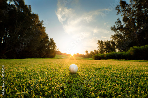 Photo sur Aluminium Golf golf course