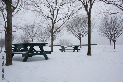 Benches covered with snow during the Winter Storm Stella – New York Poster