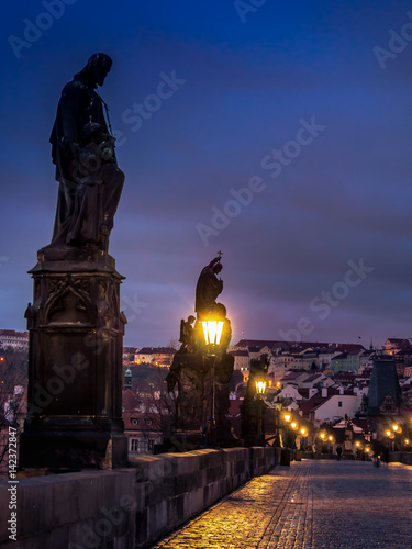 Staande foto Praag Charles Bridge at night
