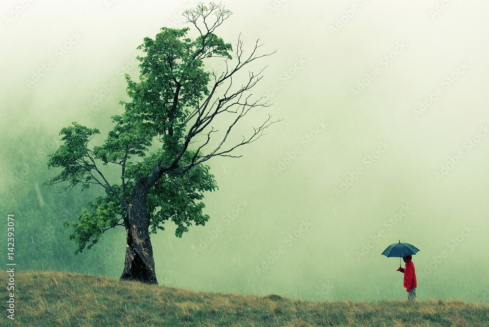 Fototapety, obrazy: Strange dialog between a red hooded person holding an umbrella and a unusual looking tree struck by lightning