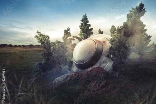 Zdjęcie XXL Rozbił UFO w lesie o zmierzchu