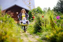 Toddler Boy Having Fun In A Wheelbarrow Pushing By Mum In Domestic Garden