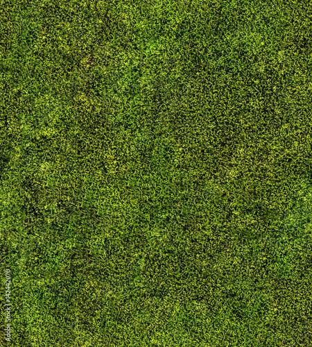 Fotografie, Obraz  closeup of green moss seamless background