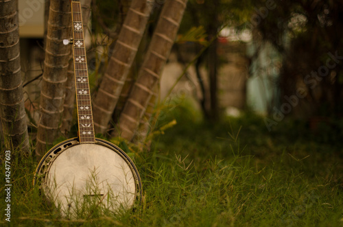 An old banjo rests on a piece of green on a farm lawn Canvas Print