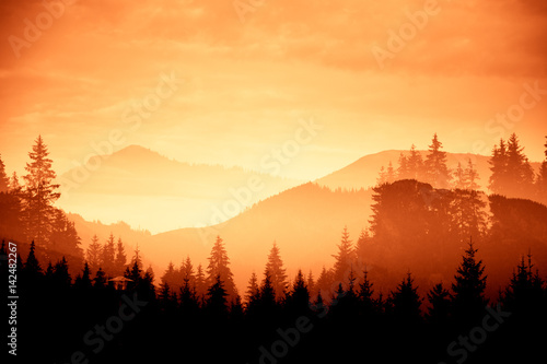 Stickers pour porte Orange eclat A beautiful, colorful, abstract mountain landscape with trees in a red tonality. Decorative, artistic look.