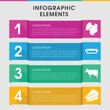 Meat infographic design with elements.