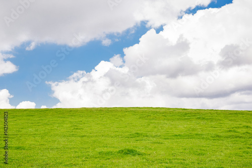 Foto auf Gartenposter Gras Grassy Hill with White Clouds and a Blue Sky