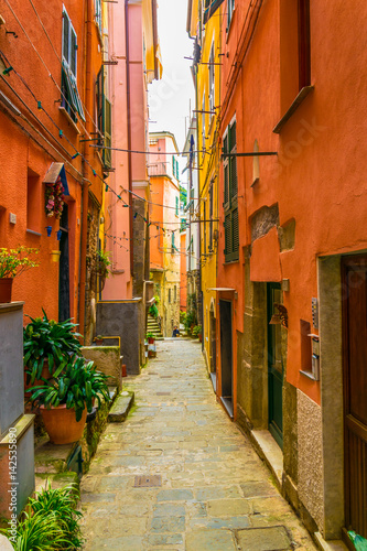 Fototapeten view of a narrow street waiting for tourists to come in vernazza, cinque terre, italy.
