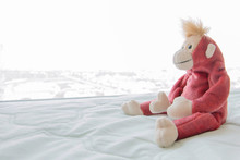 Cute Monkey Acting Hug Bedding For Take A Photo ,Monkey Feeling Lonely ,Shyly And Playful