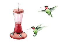 Watercolor Birds Hummingbirds Flying Around The Feeder Hand Drawn Summer Garden Illustration Isolated On White Background