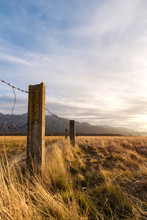 Barbed Wired Fence On Pasture