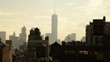 USA, New York, Manhattan, Midtown, Freedom Tower over rooftops and water towers