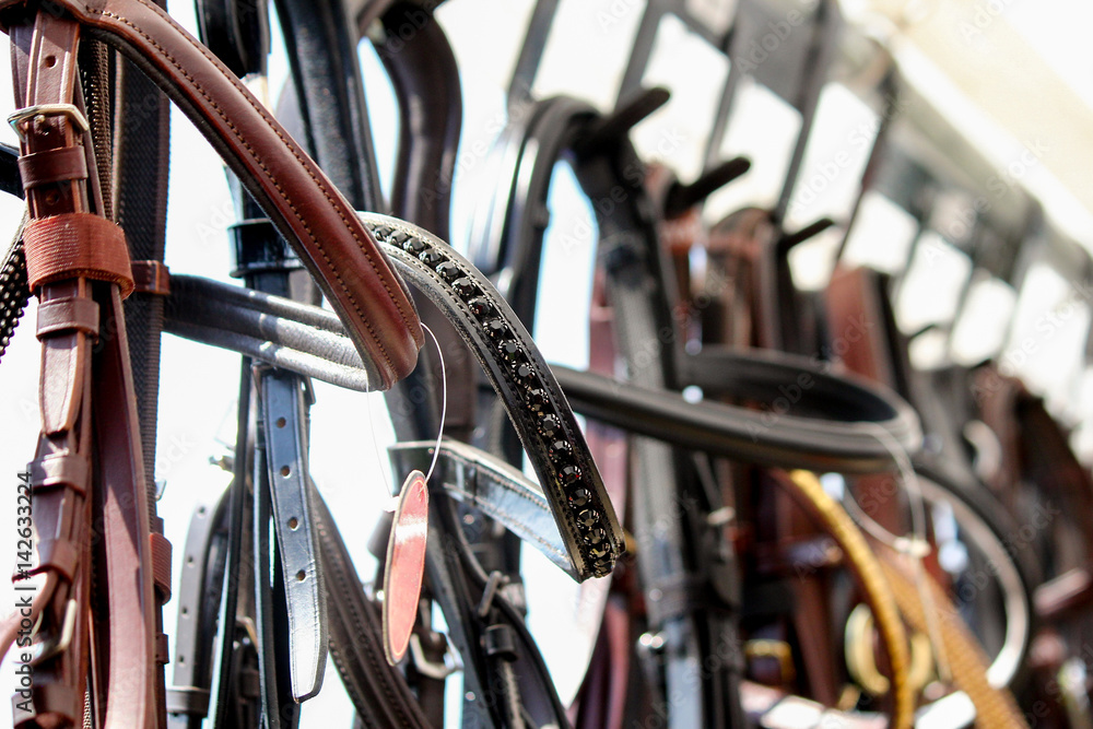 Fototapeta Close up of horse bridles on the display rack