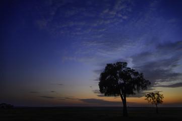 Africa, sunset, savannah, Marra Masa, big sky, dramatic clouds, clouds