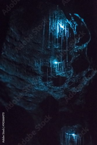 Poster Nouvelle Zélande New Zealand Glow woms in a dark cave