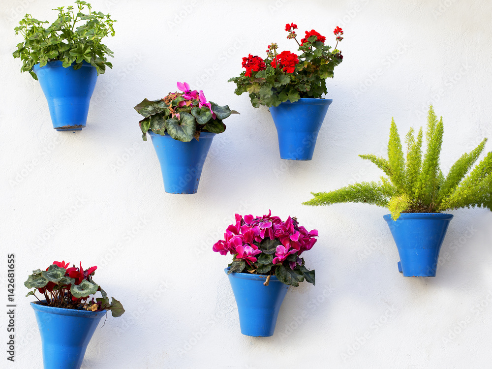 Fototapeta andalusian decoration with typical flowers pots