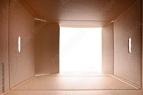 Fotografie, Tablou  View from inside a cardboard box