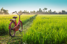 Red Bicycle With Rural View Ba...