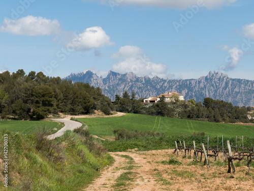 Vista de Montserrat desde Can Bou Canvas Print
