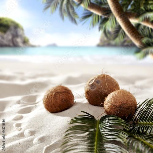 Foto auf AluDibond Palms summer time