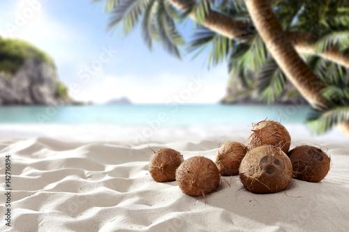 Montage in der Fensternische Palms summer time