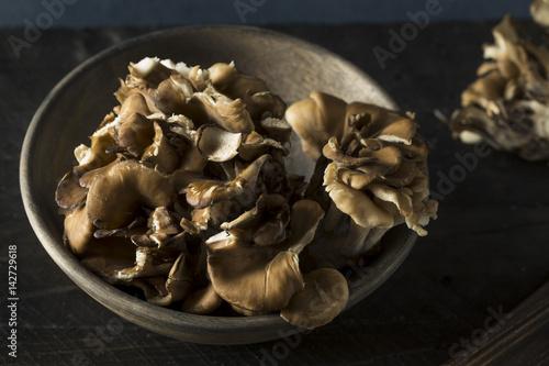 Valokuva  Raw Organic Maitake Mushrooms